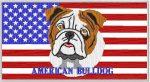 broderie-american-bulldog