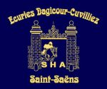 broderie-ecusson-ecurie-dagicour-equitation