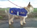broderie-manteau-chien-textile-brode