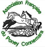broderie-vimeu-poney-centre-equestre