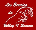 broderies-logo-club-ecurie-equitation